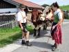 130922_St-Johann_Bauernmarkt_DSC_7000