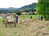 130922_St-Johann_Bauernmarkt_DSC_7080